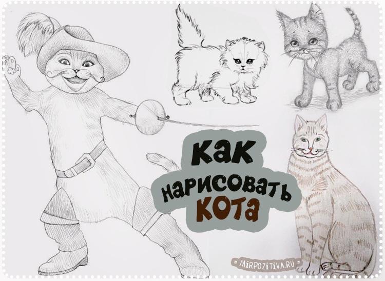 Невероятные срисовки котят (1)