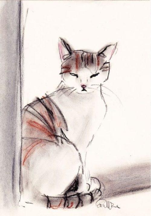 Невероятные срисовки котят (2)
