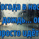 Доброе утро осень и дождь — прекрасные картинки
