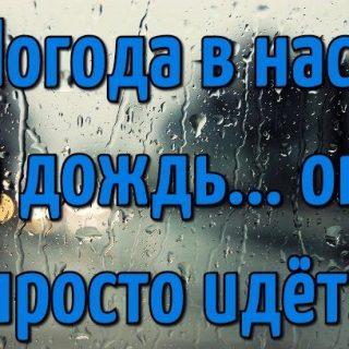 Доброе утро осень и дождь   прекрасные картинки (22)