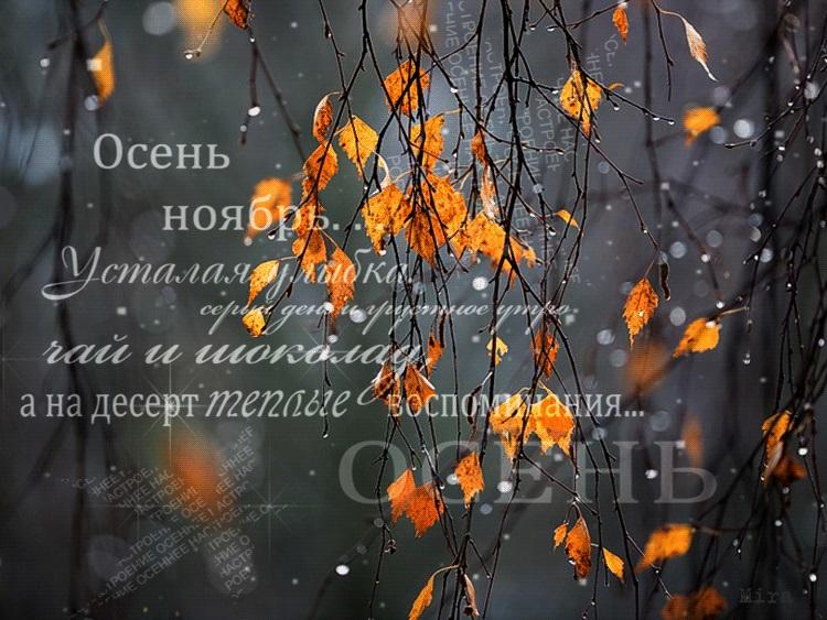 Доброе утро осень и дождь   прекрасные картинки (9)