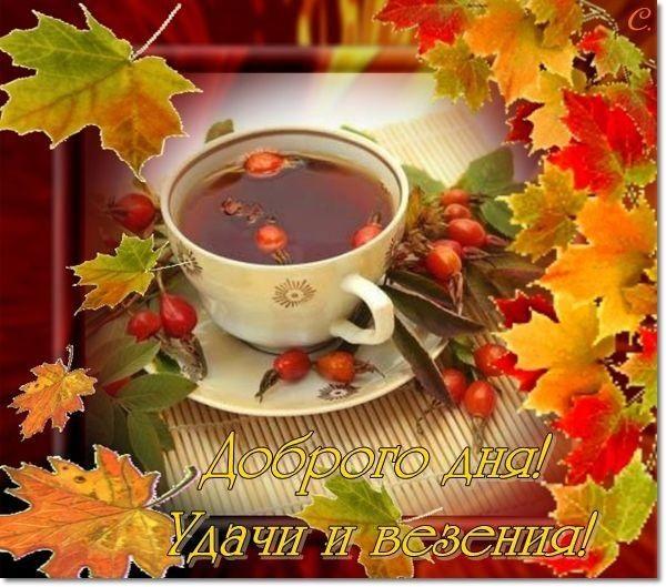 Красивые открытки на утро октября для родных (11)