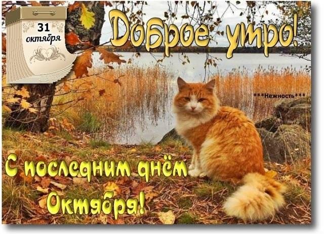 Красивые открытки на утро октября для родных (4)