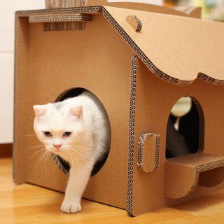 Настоящий картонный домик