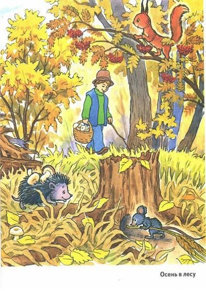 Осень в лесу красивые картинки для детей и родителей (21)