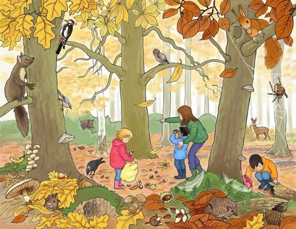 Осень в лесу красивые картинки для детей и родителей (23)