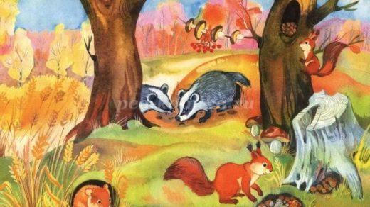 Осень в лесу красивые картинки для детей и родителей (6)