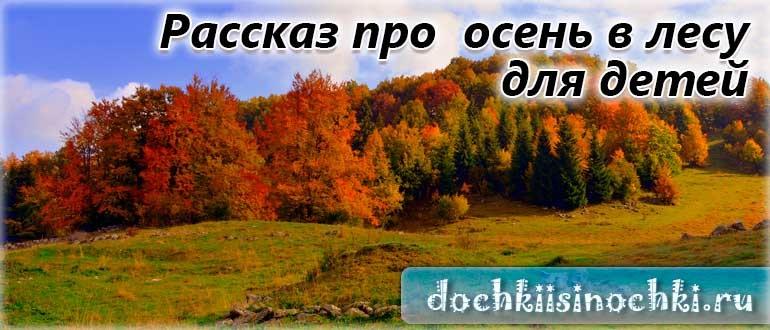 Осень в лесу красивые картинки для детей и родителей (9)