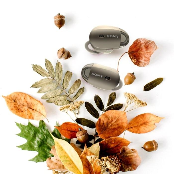 Открытки на День собирания осенних листьев 15 октября (6)