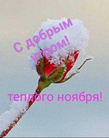 Доброе утро для друзей в ноябрь - подборка открыток (18)