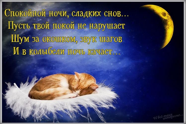 Доброй ночи ноября, холодная осень - картинки и открытки (1)