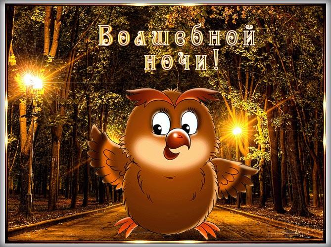 Доброй ночи ноября, холодная осень - картинки и открытки (14)