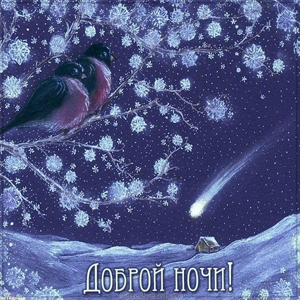 Доброй ночи ноября, холодная осень - картинки и открытки (15)