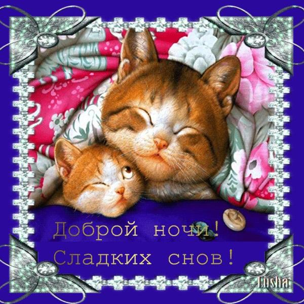 Доброй ночи ноября, холодная осень - картинки и открытки (18)