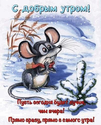 Мышка доброе утро красивые открытки с пожеланиями (11)