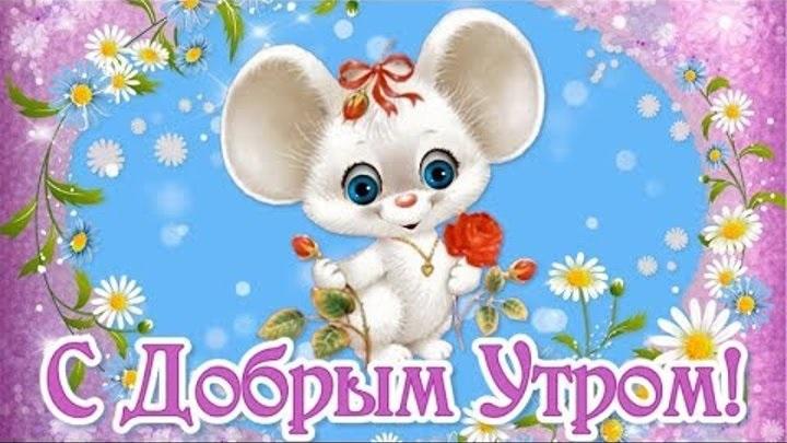 Мышка доброе утро красивые открытки с пожеланиями (12)