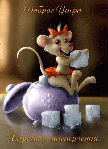 Мышка доброе утро красивые открытки с пожеланиями (14)