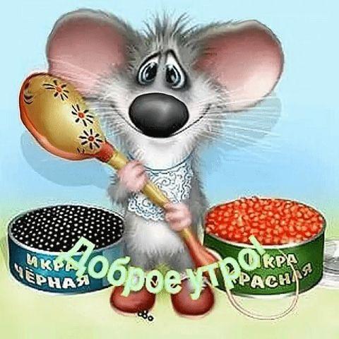 Мышка доброе утро красивые открытки с пожеланиями (16)