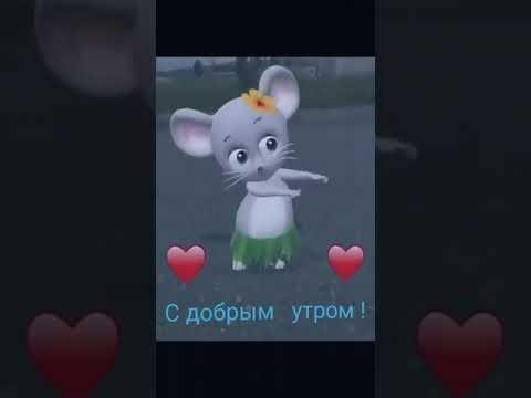 Мышка доброе утро красивые открытки с пожеланиями (2)