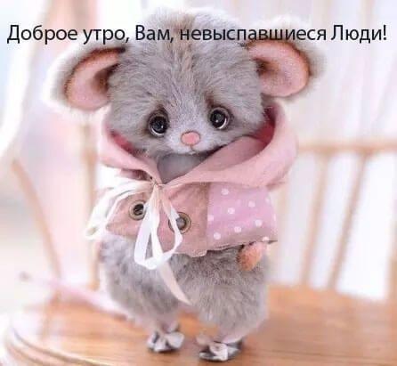 Мышка доброе утро красивые открытки с пожеланиями (21)