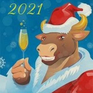 Картинки на Новый Год Быка 2021   подборка фото (15)