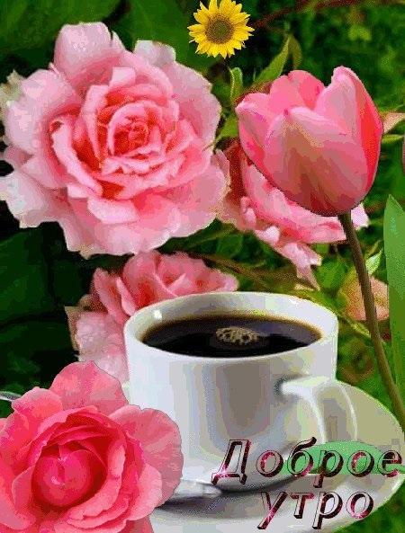 Доброе утро с розами красивые открытки для любимых (12)