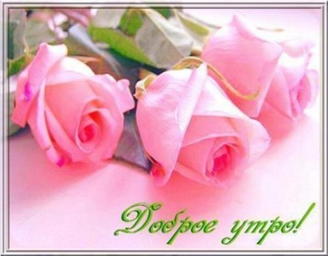 Доброе утро с розами красивые открытки для любимых (19)