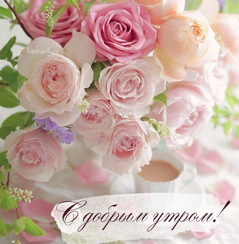 Доброе утро с розами красивые открытки для любимых (3)