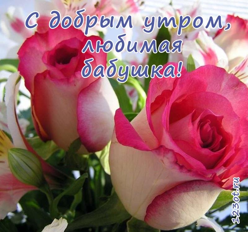 Доброе утро с розами красивые открытки для любимых (4)