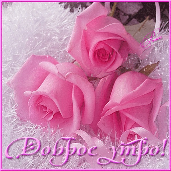 Доброе утро с розами красивые открытки для любимых (6)