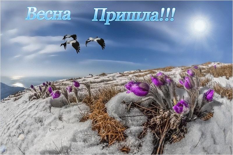 Красивые открытки Вот и весна пришла (15)