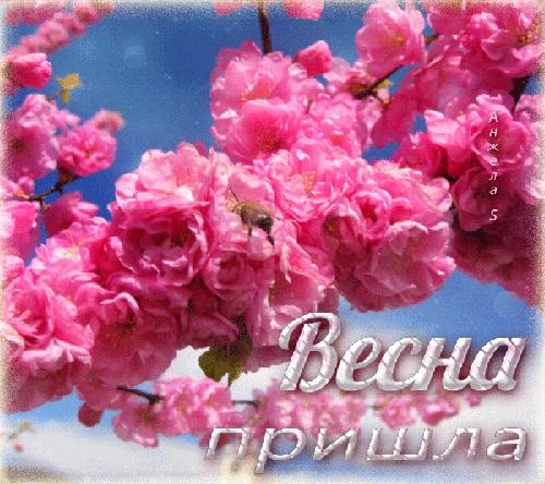 Красивые открытки Вот и весна пришла (2)