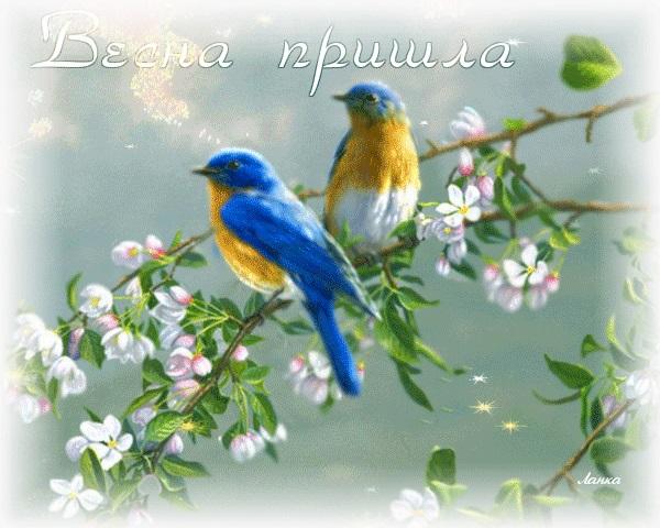 Красивые открытки Вот и весна пришла (3)
