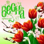 Красивые открытки «Вот и весна пришла»