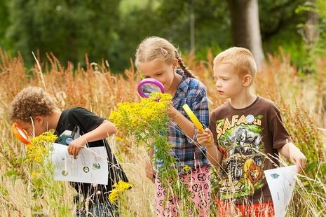 Прогулки на свежем воздухе картинки для детей (16)