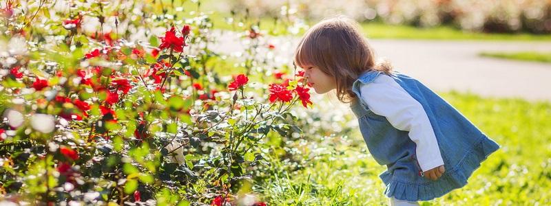 Прогулки на свежем воздухе картинки для детей (2)