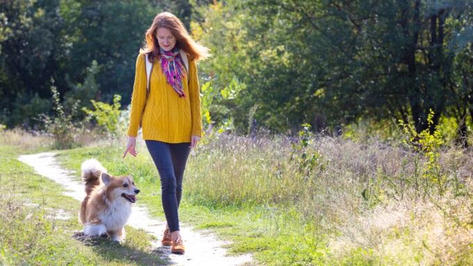 Прогулки на свежем воздухе картинки для детей (5)