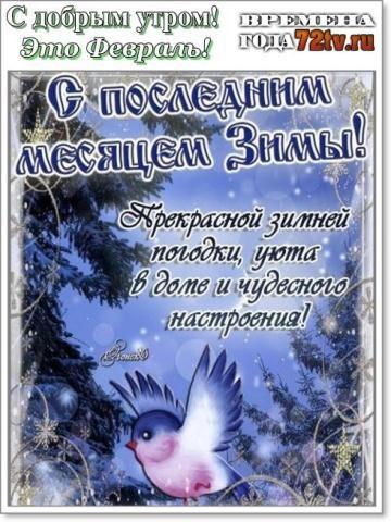 Февральское доброе утро картинки и открытки (1)