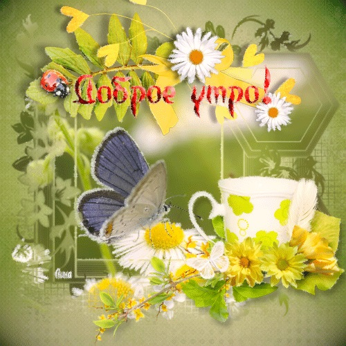 Февральское доброе утро картинки и открытки (12)