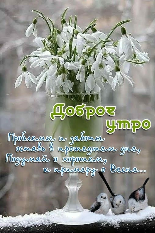 Красивые открытки весна пришла, с добрым утром - подборка (1)