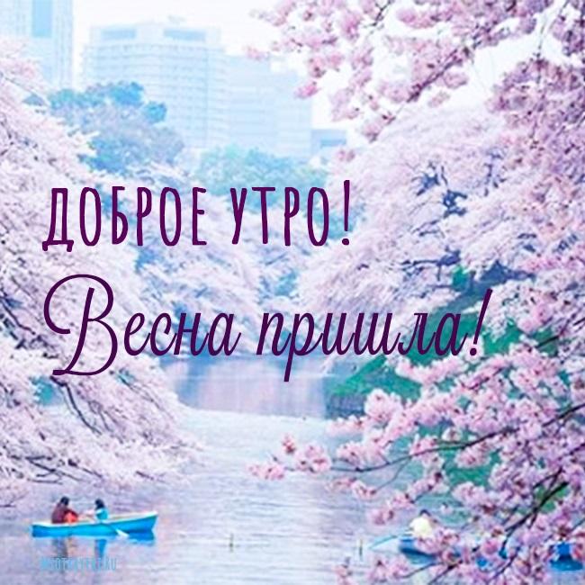 Красивые открытки весна пришла, с добрым утром - подборка (18)