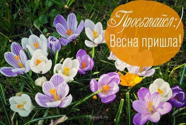 Красивые открытки весна пришла, с добрым утром - подборка (5)