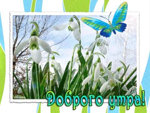 Красивые открытки весна пришла, с добрым утром - подборка (7)