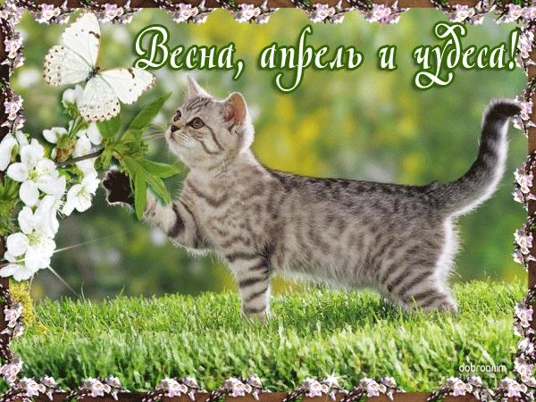 С добрым утром апрель, красивые открытки и картинки (2)