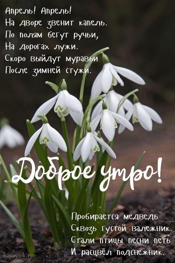 С добрым утром апрель, красивые открытки и картинки (8)