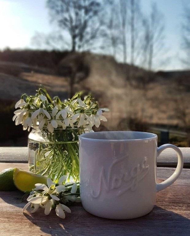 Картинки с добрым утром апрель для друзей и близких (24)