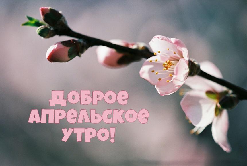 Картинки с добрым утром апрель для друзей и близких (6)
