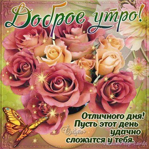 Красивые открытки с добрым майским утром - подборка (12)