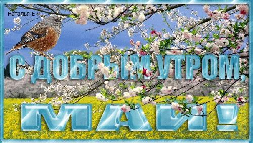Красивые открытки с добрым майским утром - подборка (16)
