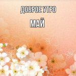 Красивые открытки с добрым майским утром — подборка